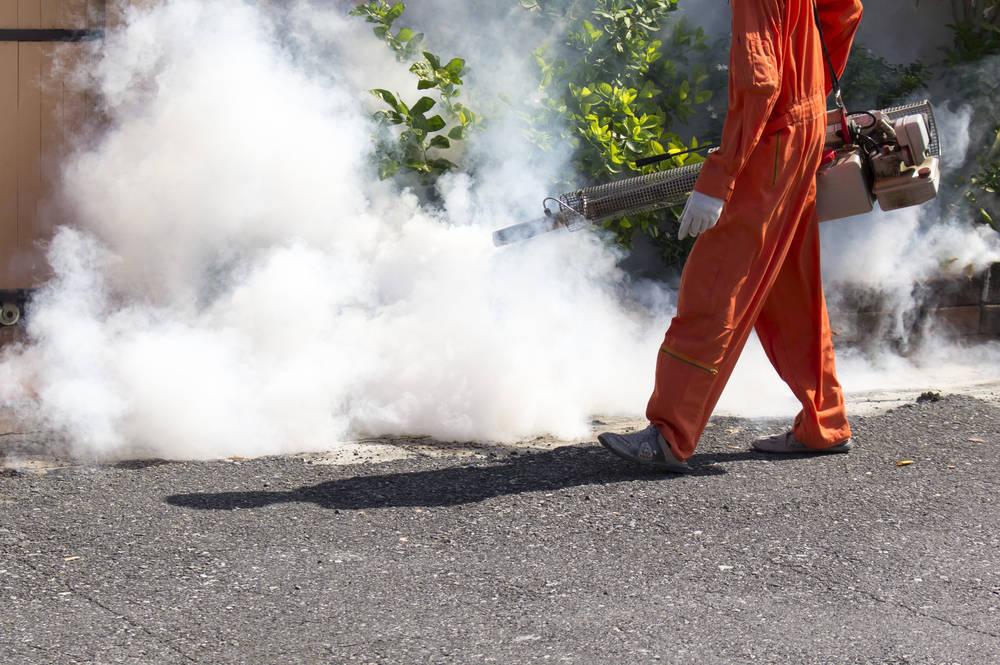 Fumigación y limpieza
