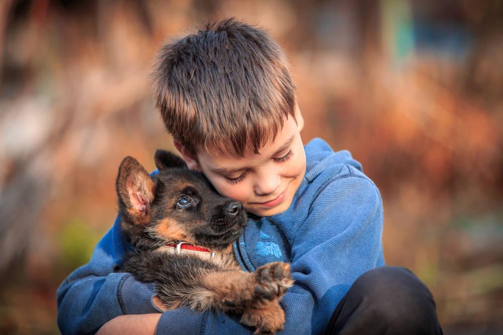 Las mejores razas de perro para los niños