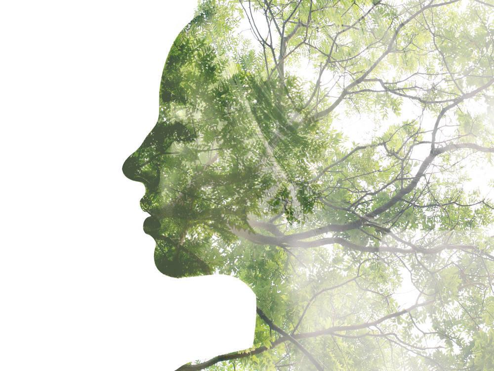 Ecofeminismo, una nueva manera de entender la naturaleza