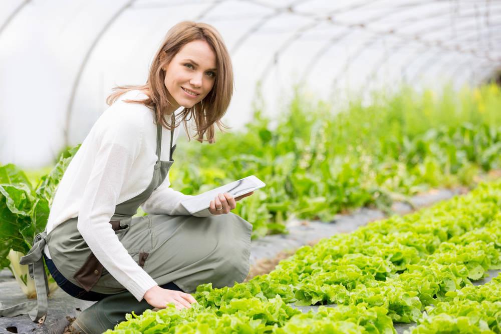 APPCC, fundamental para garantizar la seguridad alimentaria