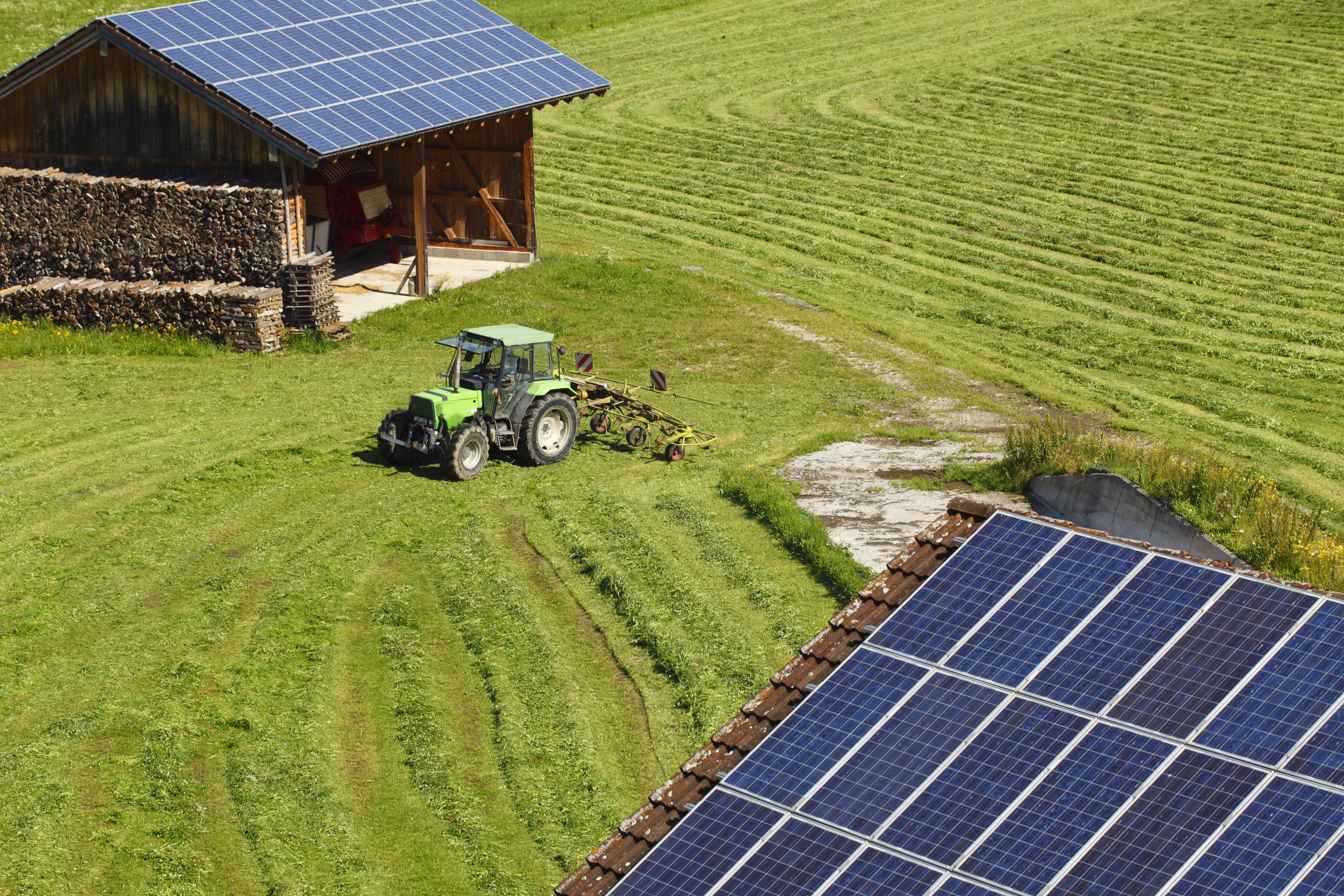 Energías renovables, una apuesta segura para el futuro del medioambiente