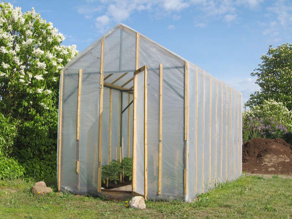 Las ventajas de un invernadero casero